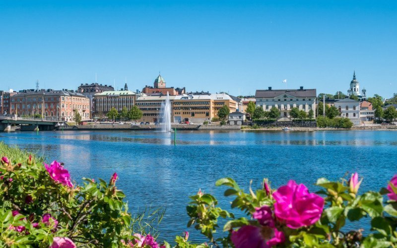 /assets/img/the-city-of-harnosand-in-north-part-of-sweden-flowers.jpg